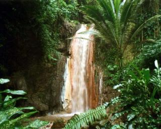 DiamondWaterfall,StLucia2000